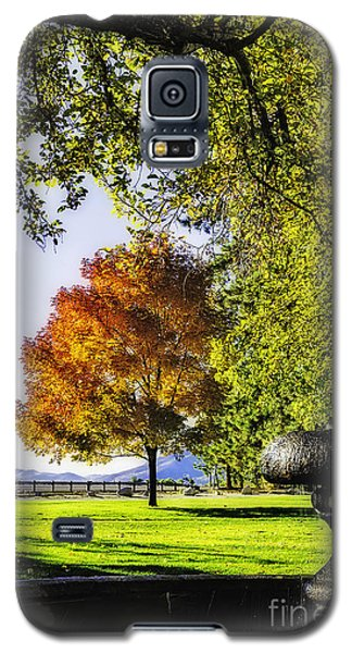 Autumn Canopy Galaxy S5 Case by Nancy Marie Ricketts