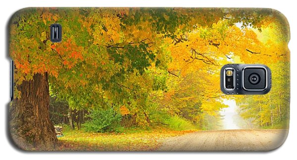 Autumn Cascade Galaxy S5 Case