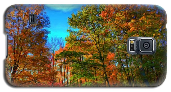 Autumn Clearing Galaxy S5 Case by Dennis Lundell