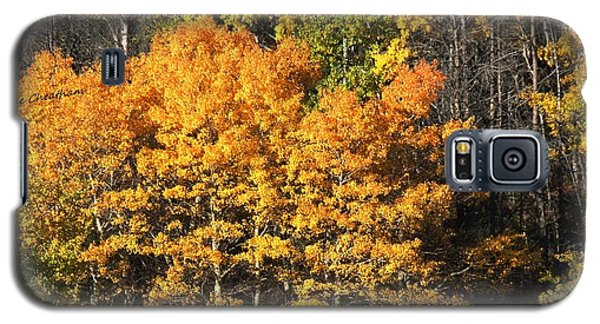 Autumn Color At The Continental Divide Galaxy S5 Case by Kae Cheatham