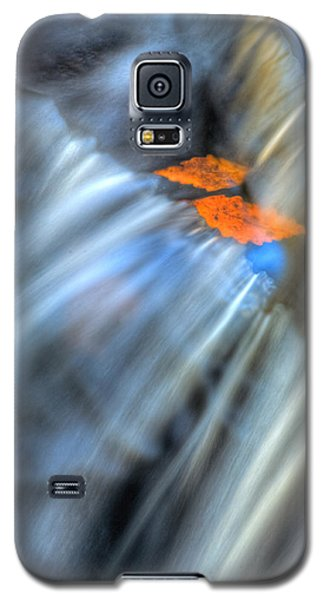 Autumn Color Caught In Time Galaxy S5 Case