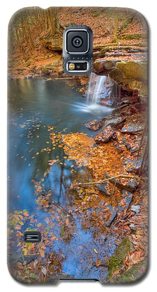 Autumn Color In Pond Galaxy S5 Case
