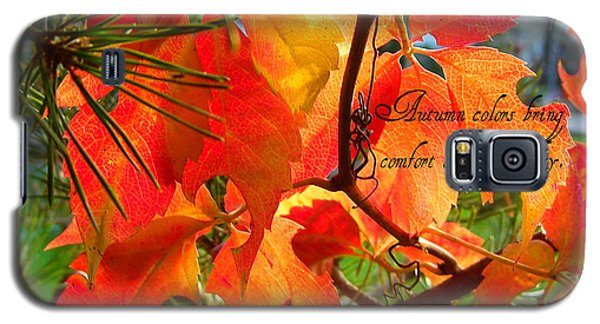 Galaxy S5 Case featuring the photograph Autumn Colors by Heidi Manly