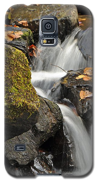 Autumn Colors On Big Crabtree Creek Galaxy S5 Case