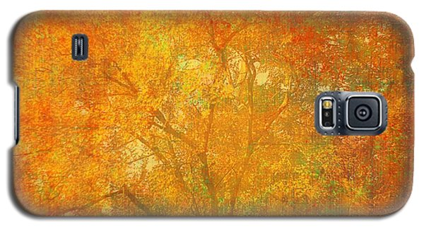 Autumn Colors Galaxy S5 Case by Suzanne Powers
