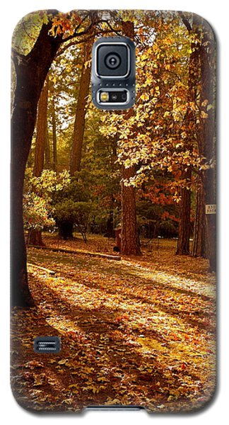 Autumn Country Lane Evening Galaxy S5 Case