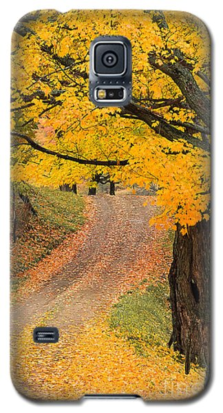 Autumn Country Road Galaxy S5 Case by Alan L Graham