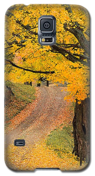 Autumn Country Road Galaxy S5 Case