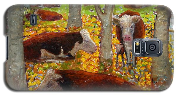 Autumn Cows Galaxy S5 Case