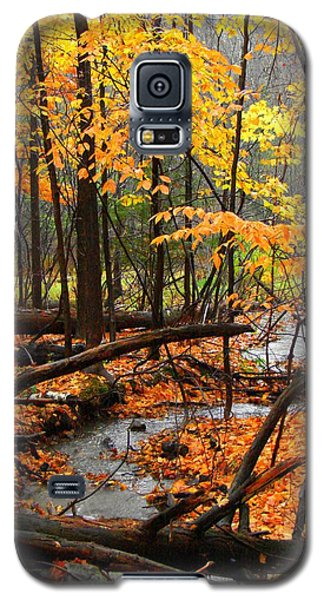 Galaxy S5 Case featuring the photograph Autumn Creek In The Rain by Rodney Lee Williams