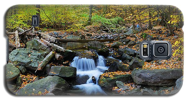 Autumn Creek Panorama With Yellow Maple Trees Galaxy S5 Case
