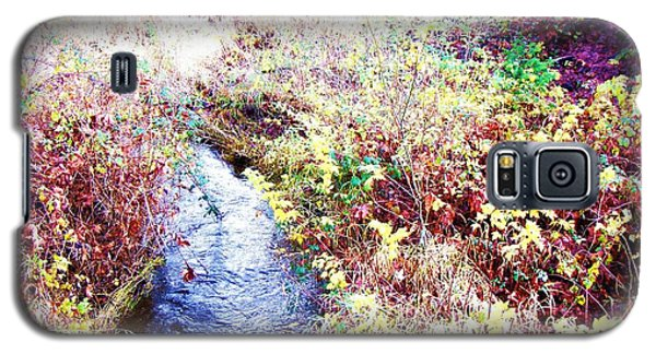 Autumn Creek Galaxy S5 Case by Vanessa Palomino