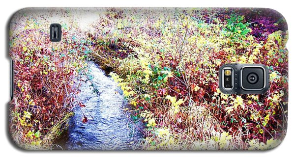 Autumn Creek Galaxy S5 Case