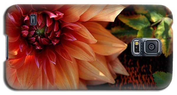 Galaxy S5 Case featuring the photograph Autumn Dahlia Darling by Jeanette French