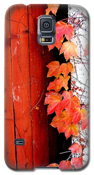 Autumn Days Galaxy S5 Case