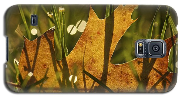 Autumn Dew Galaxy S5 Case by Penny Meyers