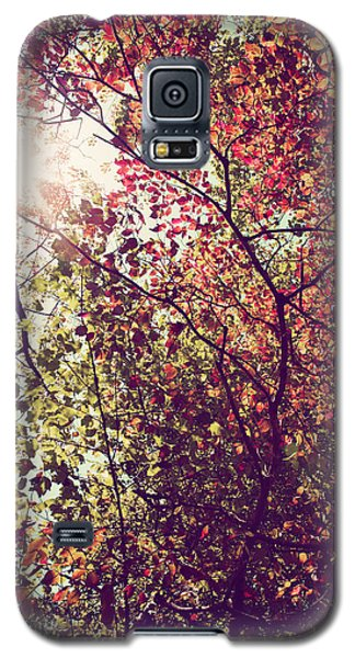 Galaxy S5 Case featuring the photograph Autumn Dresses In Flame And Gold by Kim Fearheiley