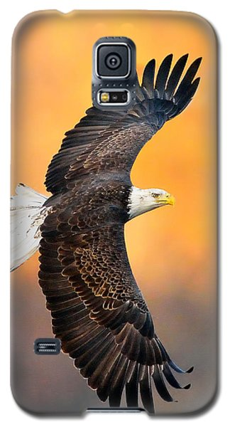 Autumn Eagle Galaxy S5 Case