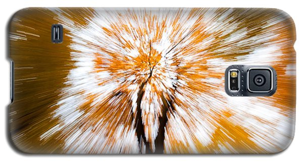Autumn Explosion Galaxy S5 Case