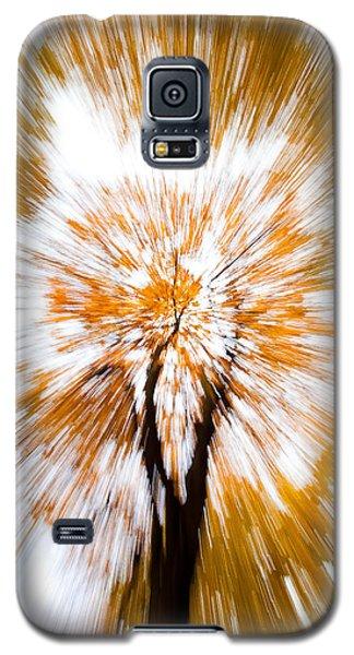 Autumn Explosion Galaxy S5 Case