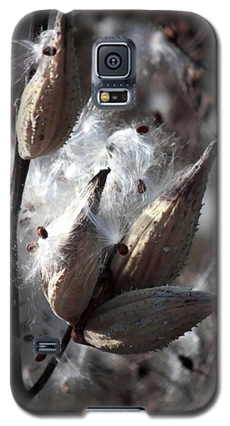 Galaxy S5 Case featuring the photograph Autumn Fairies  by Penny Hunt
