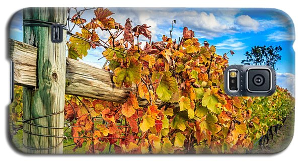 Autumn Falls At The Winery Galaxy S5 Case