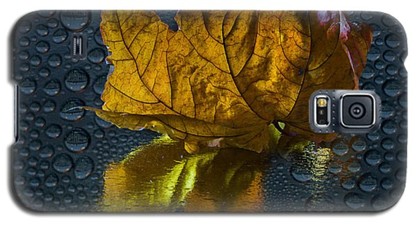 Galaxy S5 Case featuring the photograph Autumn Fantasy 2 by Vladimir Kholostykh