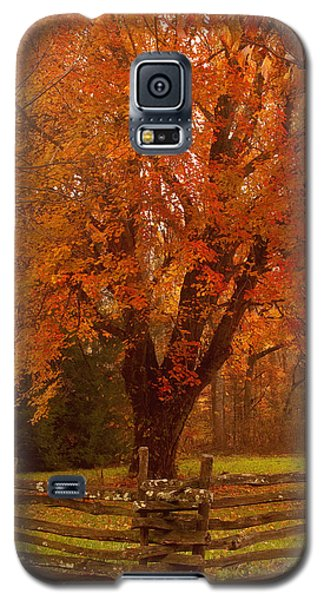 Autumn Fences Smoky Mountain National Park Galaxy S5 Case