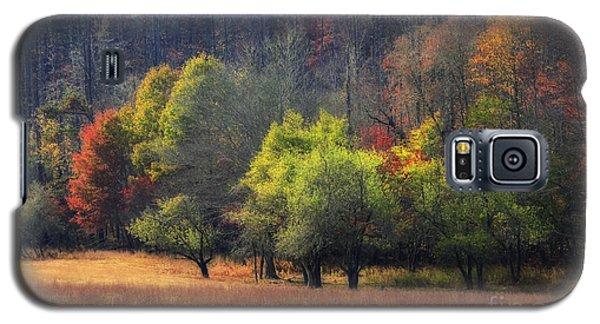 Autumn Field Galaxy S5 Case