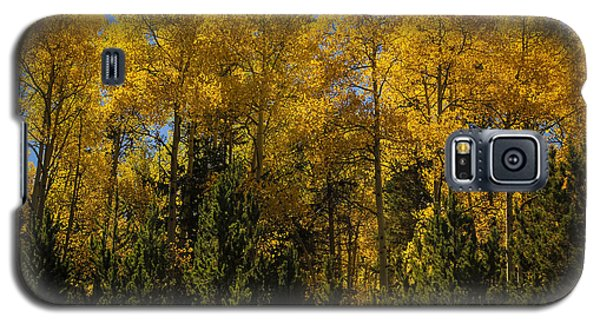 Autumn Fire Galaxy S5 Case
