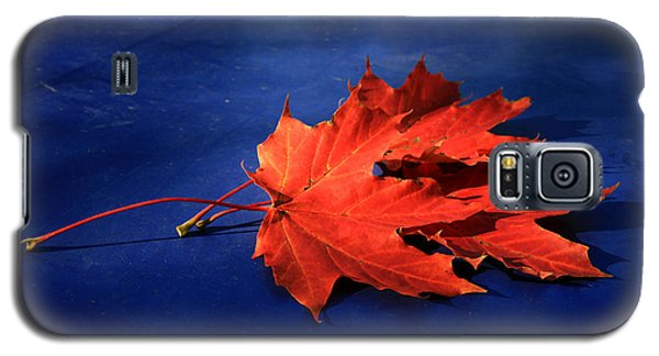 Autumn Fire Galaxy S5 Case