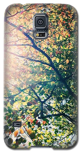 Galaxy S5 Case featuring the photograph Autumn Flame by Kim Fearheiley