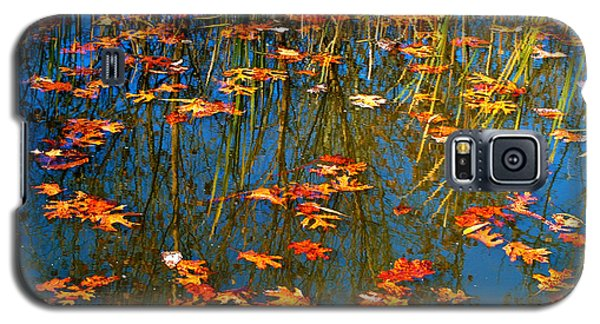 Galaxy S5 Case featuring the photograph Autumn  Floating by Peggy Franz