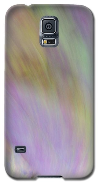 Autumn Foliage 8 Galaxy S5 Case