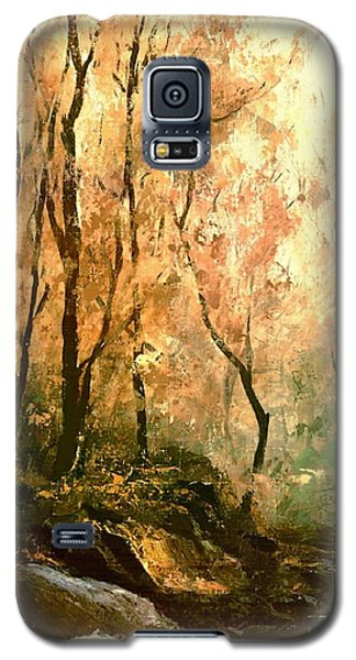 Autumn Forest Baltimore Maryland Galaxy S5 Case