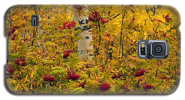 Autumn Forest Colors Galaxy S5 Case