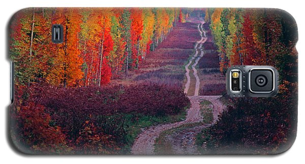 Autumn Forest Road Galaxy S5 Case