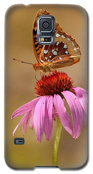Autumn Fritillary Butterfly Galaxy S5 Case