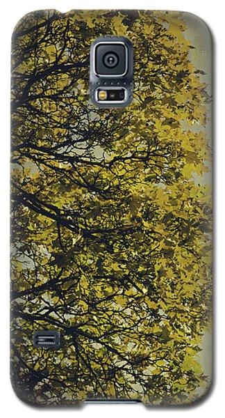 Galaxy S5 Case featuring the photograph Autumn Glory by Ari Salmela