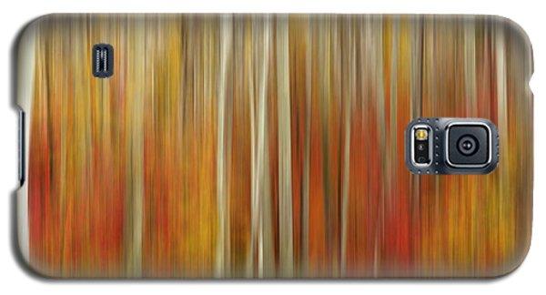 Autumn Glory Galaxy S5 Case