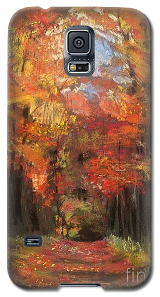 Galaxy S5 Case featuring the painting Autumn Glow by Mary Lynne Powers