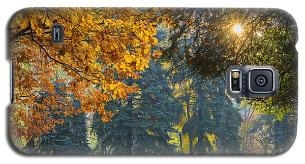 Autumn Gold Galaxy S5 Case