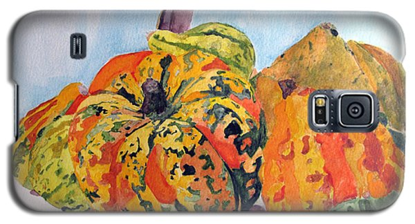 Autumn Gourds Galaxy S5 Case by Sandy McIntire