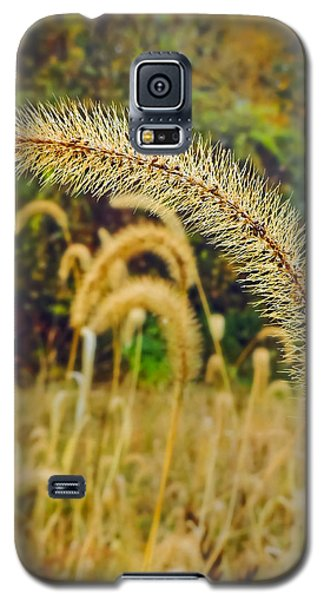 Autumn Grass Galaxy S5 Case