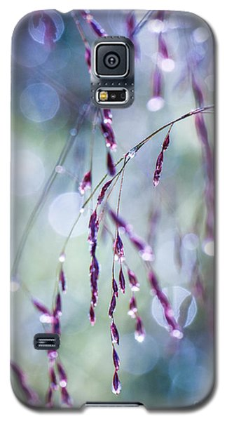 Autumn Grasses Galaxy S5 Case