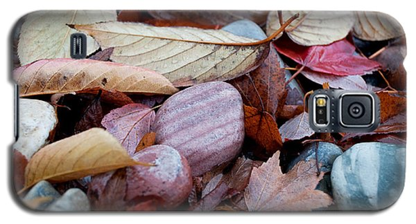 Galaxy S5 Case featuring the photograph Autumn Greatness by Gwyn Newcombe
