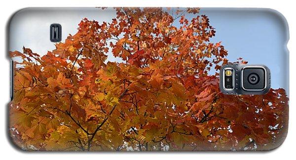 Autumn Harmony 1 Galaxy S5 Case