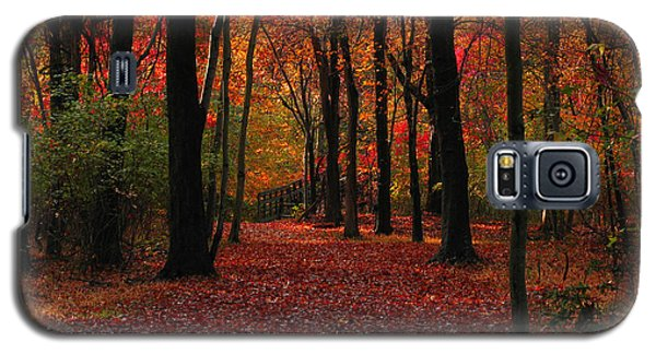 Galaxy S5 Case featuring the photograph Autumn IIi by Raymond Salani III