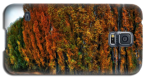 Autumn Impression Galaxy S5 Case