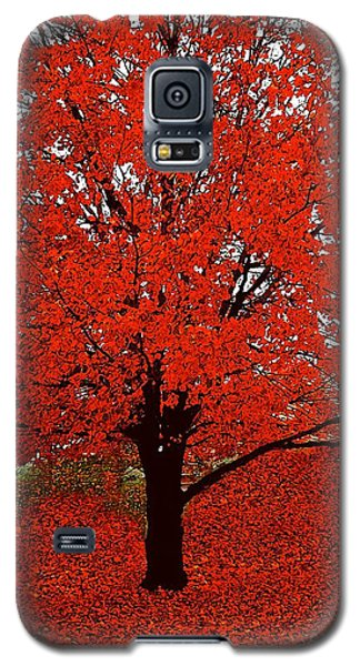 Red Tree Impressions #1 Red Galaxy S5 Case